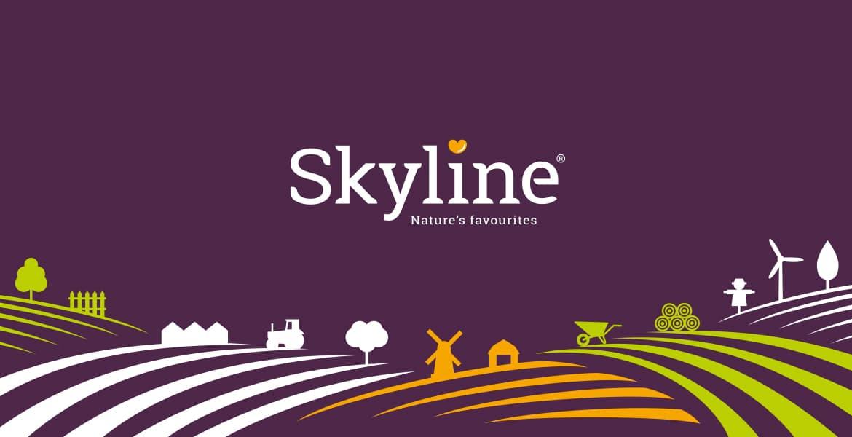 Skyline huisstijl logo branding