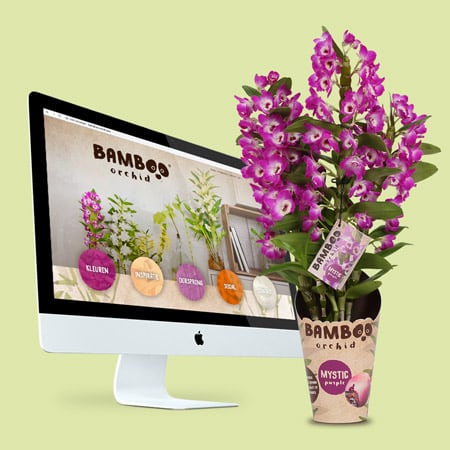 http://Bamboo%20website%20packaging